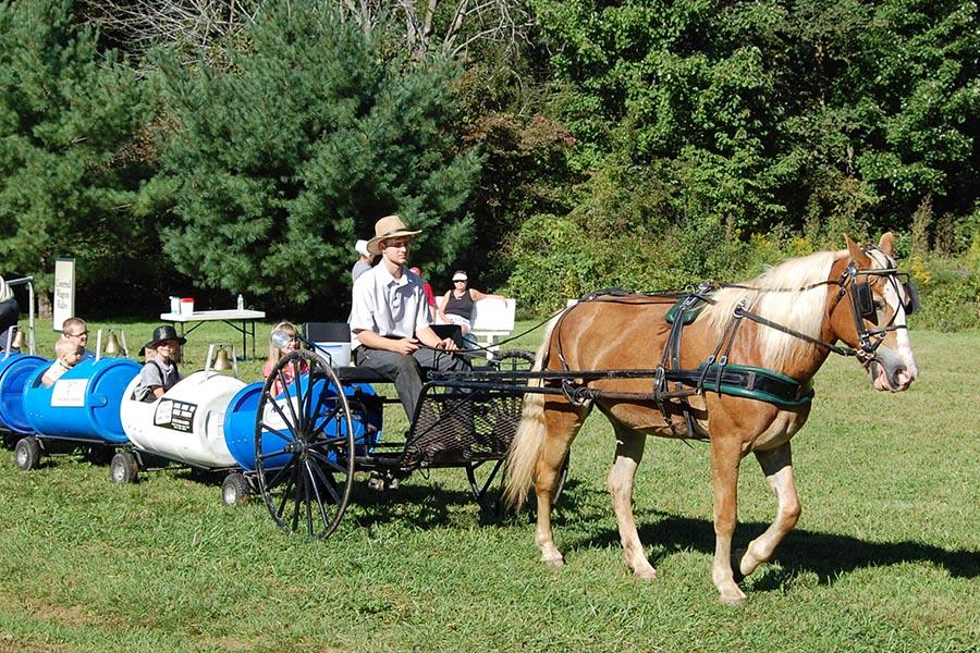 Log Cabin Days Horse Train