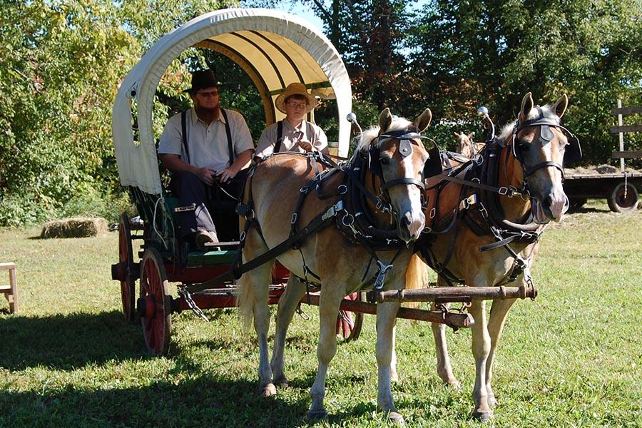 Log Cabin Days Horse Pulled Wagon